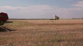 Harvesting stock video footage