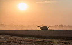 Harvesting at sunset. Integrated harvesting combine at sunset. Caucasus, Russia Royalty Free Stock Image