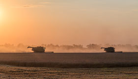Harvesting at sunset. Integrated harvesting combine at sunset. Caucasus, Russia Stock Photo