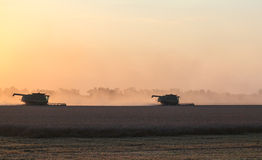 Harvesting at sunset. Integrated harvesting combine at sunset. Caucasus, Russia Stock Photos