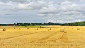 Harvesting. Sweden Stock Photos