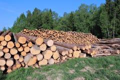 Harvesting timber logs Stock Photos