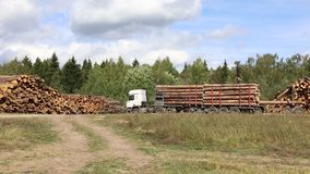Harvesting timber logs in a forest in Russia. Transportation of logs on the big timber carrier stock footage