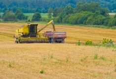 Harvesting time Royalty Free Stock Images