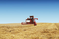 Harvesting time with a combine. On a yellow field Royalty Free Stock Photos