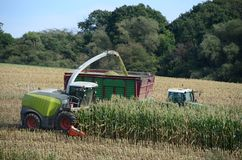 Harvesting time Stock Images