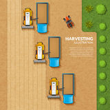 Harvesting top view illustration Royalty Free Stock Images