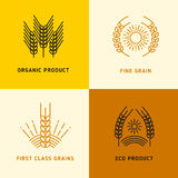 Harvesting vector logos with wheat grains. Logo with fine grain first class illustration Royalty Free Stock Images