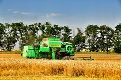 Harvesting wheat stock image