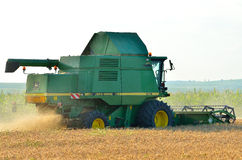 Harvesting the wheat crop with combine harvester Royalty Free Stock Image
