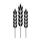Harvesting wheat ears pictogram Stock Image