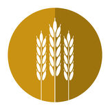 Harvesting wheat ears shadow. Vector illustration eps 10 Royalty Free Stock Photography
