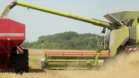 Harvesting On The Wheat Field Combine And Tractor Agriculture Machinery Technology Food Modification Crop Farming