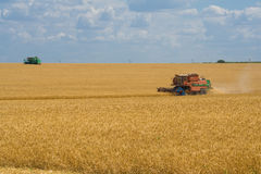 Harvesting wheat harvesters Royalty Free Stock Images