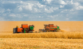 Harvesting wheat harvesters on the background field and blue sky Stock Photo