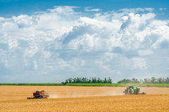 Harvesting of wheat harvesters in the background field and blue Royalty Free Stock Image