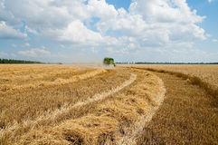Harvesting and windrows Stock Photography