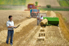 Harvesting. Young landowner with laptop supervising harvesting work Royalty Free Stock Image