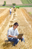 Harvesting Stock Photography