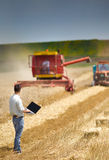Harvesting. Young landowner with laptop supervising harvesting work Stock Photography