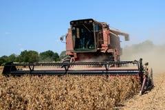 harvestor切口烘干了,在家庭农场的成熟的大豆 免版税库存图片