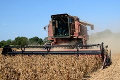 A harvestor cutting dried, ripened soybeans on a family farm Royalty Free Stock Image