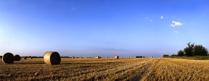 AFTER HARVESTS-Panorama Stock Photography