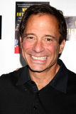 Harvey Levin Stock Photo