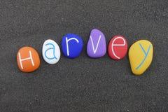 Harvey, nome dado masculino comemorado com composição das pedras do mar sobre a areia branca fotos de stock royalty free