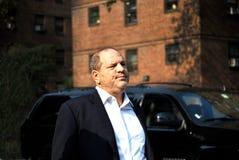Harvey Weinstein royaltyfri bild