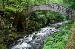 Harz, Germany Royalty Free Stock Image