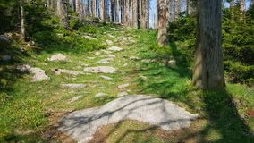 Harz hiking Stock Images