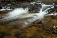 Harz Mountain Creek Stock Image
