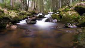 Harz Mountain River Royalty Free Stock Photography