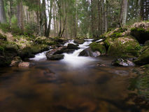 Harz Mountain River. Small stream after winter season in the Harz Mountains Stock Photos