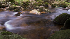 Harz Mountain River Stock Images