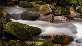 Harz Mountain Stream Stock Photography