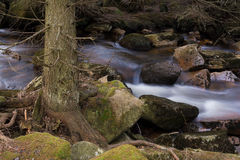 Harz Mountain Stream Stock Images