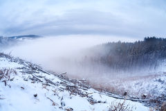 Harz mountainf in winter Royalty Free Stock Photo