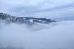 Harz mountains in dense winter fog Stock Photos