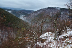 Harz mountains if winter fog Royalty Free Stock Image