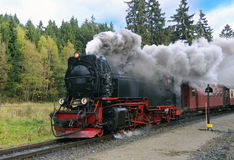 Harz Narrow Gauge Steam Train, Germany. Harz Narrow Gauge Steam Train in clouds of smoke; The Brocken Railway Line, next to station Drei Annen; Saxony-Anhalt Royalty Free Stock Images