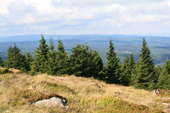 The Harz National Park Royalty Free Stock Image
