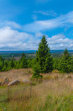 Harz Nationalpark, Alemanha fotos de stock royalty free