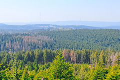 Harz panorama Stock Photography