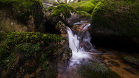 Harz stenblockliten vik Arkivfoton