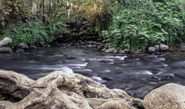 Hasbani snir river and reservation in north israel Stock Photo