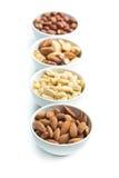 Haselnüsse, Mandeln, Acajoubaum und Paranüsse Stockbild