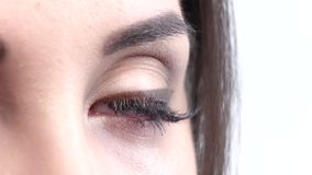 Haselnußblinzeln mit einen weibliches Augen Abschluss oben stock footage