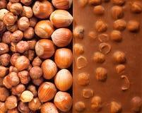 Haselnuss-Schokolade Lizenzfreies Stockfoto